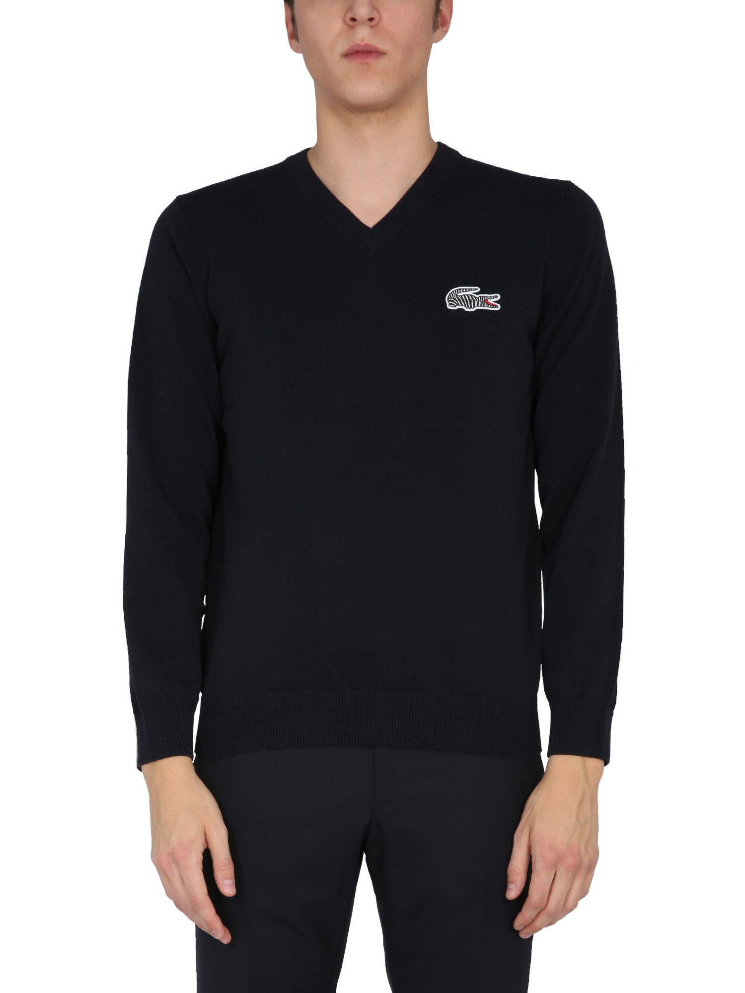 Lacoste X National Geographic V-NECK SWEATER
